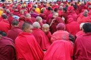 buddhism-705584_1920