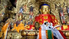 tibet-694625_1920