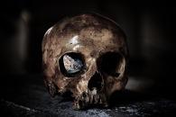 skull-3026666_1920