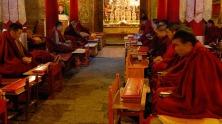 tibet-694618_1280